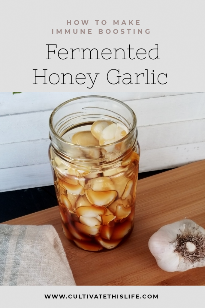 Fermented Honey Garlic Cultivate This Life